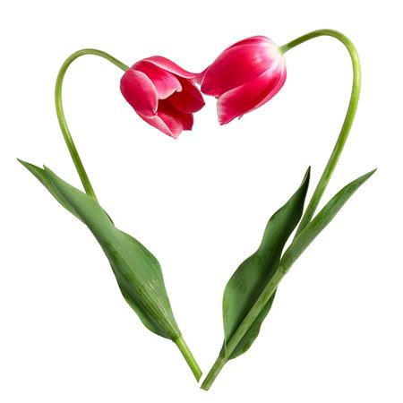 Idea for Valentine Stock Photo
