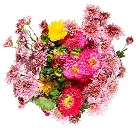 still life flowers: Autumn flowers on a white background