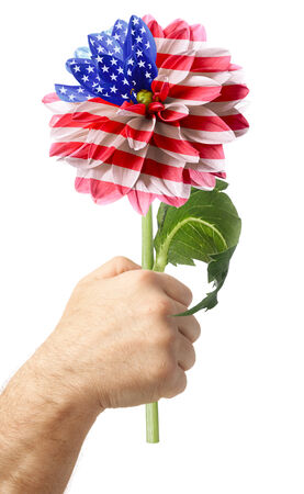 Hand with USA flag on the order of flower . Isolated on a white photo