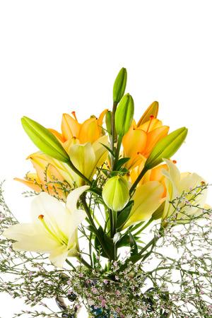 lemony: Orange and white lily on a white background Stock Photo