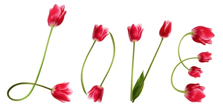 beauteous: Title Love from beauteous pink tulips. Stock Photo