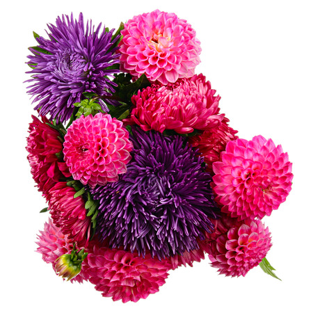 Bouquet of autumn flowers. Dahlias and asters isolated on white