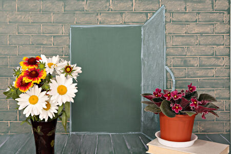 open spaces: Flowers before illustration on a chalkboard of the open door in class Stock Photo