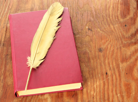 eather: Gold quill pen and red book on grunge wood board Stock Photo