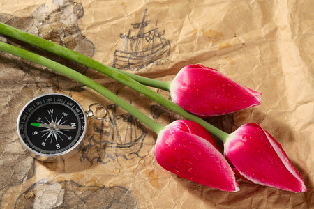 battered land: Compass and tulips on a old marine map with image of sailers