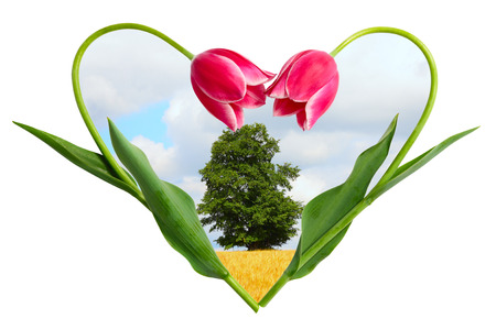 paysage: Landscape in a frame from two flowers making the form of heart