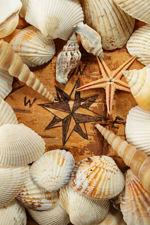 battered land: Abstract sea idea. Compass rose, shell and starfish Stock Photo