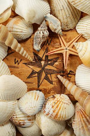 disrepair: Abstract sea idea. Compass rose, shell and starfish Stock Photo
