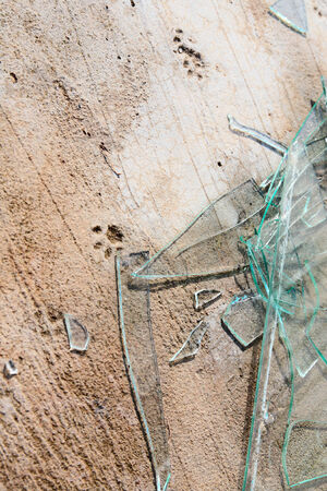 smithereens: The beaten glass on the concrete basis with the printed animal traces Stock Photo