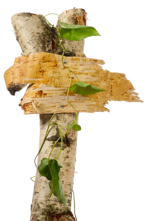 birch bark: Signpost from birch cork isolated on white Stock Photo