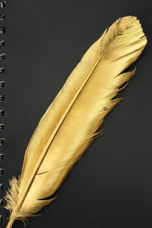 Gold firebird quill pen on a black diary photo