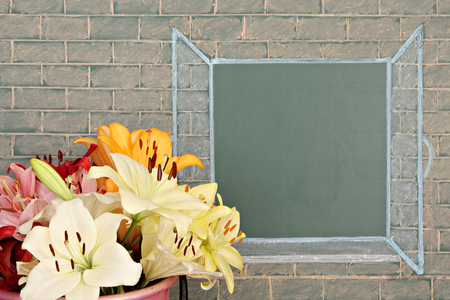 picture book: Flowers before illustration on a chalkboard of the open window Stock Photo