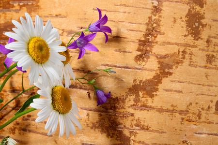 birchbark: Wild flowers on grunge background from birch bark Stock Photo