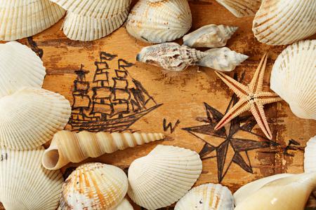 Conchiglie e stelle marine sul grafico mare con la nave per l'ordine di antichità