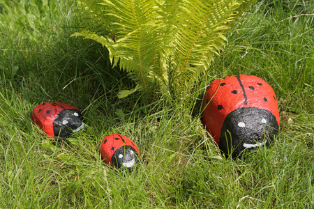 lady beetle: Stones painted as a lady-beetle on green lawn
