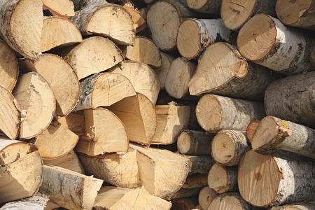 stockpile: Stockpile of firewood