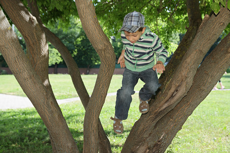 rollick: Summer plays. The boy jumping from a tree Stock Photo