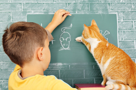 incorrectly: Education joke: The learner the cat who incorrectly solved a problem and his teacher