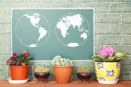 flower vase: Chalk drawing of Earth map on blackboard