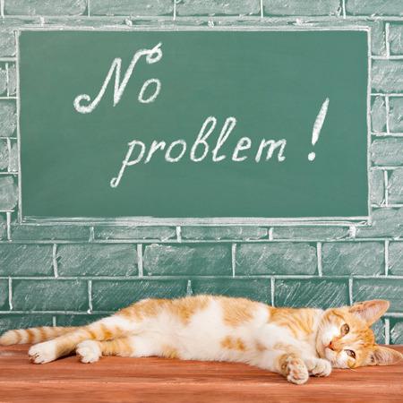 no problem: NO PROBLEM, funny education idea