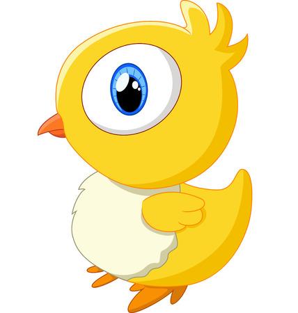 baby chicken: Cute baby chicken