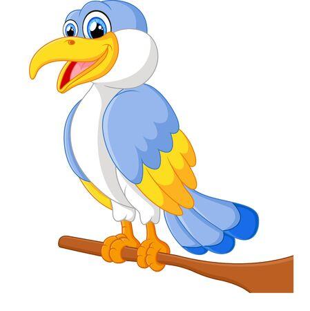 angry sky: cute bird cartoon