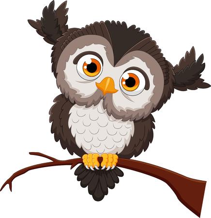head wise: cute owl cartoon Stock Photo