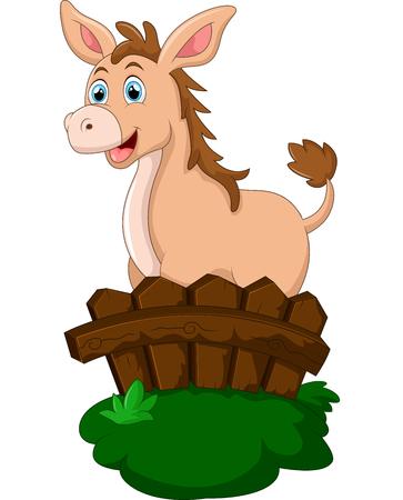 farmstead: Cute donkey behind fence