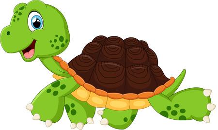 tortuga: Tortuga caminando feliz