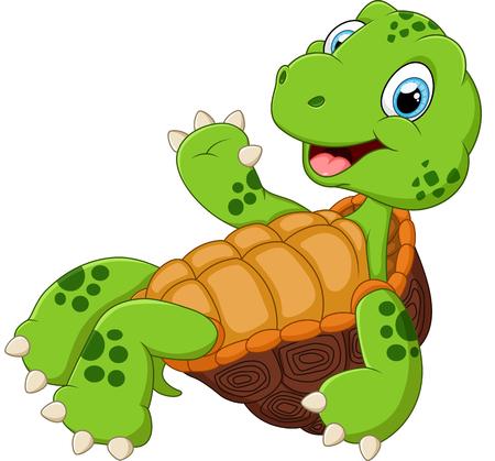 tortuga de caricatura: Tortuga linda posando de dibujos animados Vectores