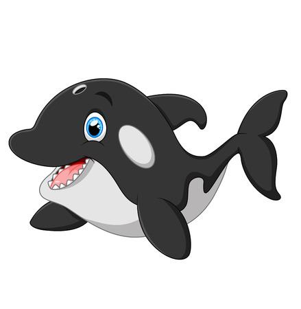 killer whale: Cute killer whale cartoon