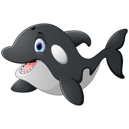 killer: Killer whale cartoon