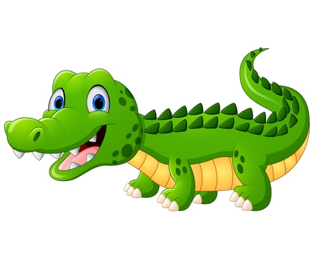 alligator isolated: Cartoon crocodile