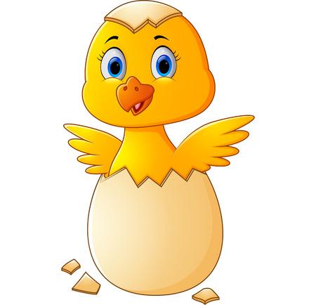 huevo caricatura: Huevo agrietado con pollo lindo dentro de