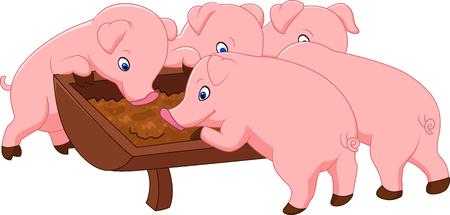 pet breeding: Happy farm pig