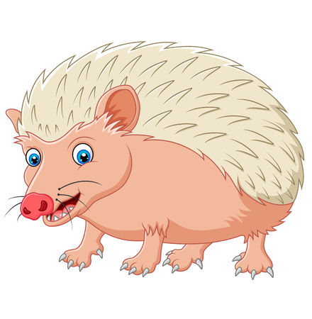 looked: Cartoon hedgehog being looked Illustration