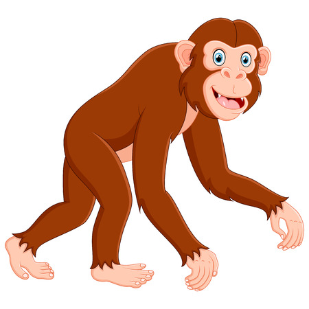 jumping monkeys: Cartoon funny monkey