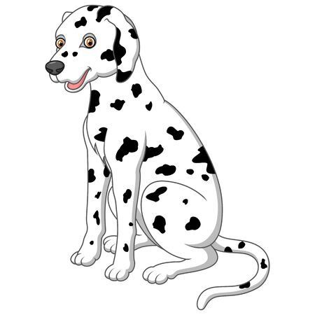 dalmatian: cute and adorable dalmatian dog sitting on floor Illustration