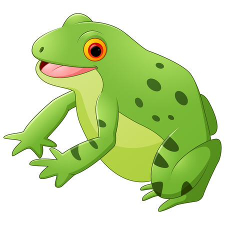 caricaturas de ranas: Rana feliz de dibujos animados