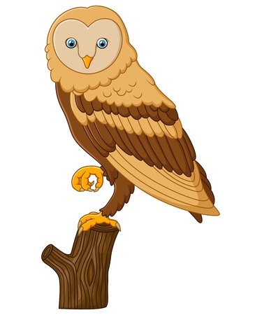 cute cartoon: Cute owl cartoon