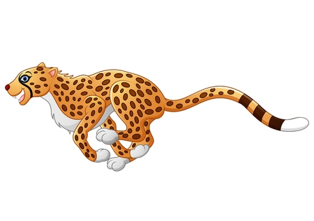 Cute cheetah running