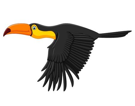 toucan: Cute toucan bird cartoon flying Illustration