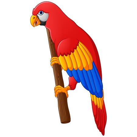posing: Cute parrot cartoon posing