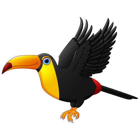 the animated cartoon: Cute cartoon toucan bird flying