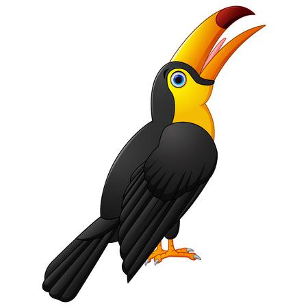 toucan: Cute toucan cartoon Stock Photo