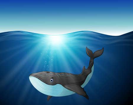 gush: Cute whale cartoon on the sea Stock Photo