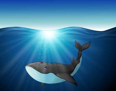 gush: Cute whale cartoon on the sea Illustration