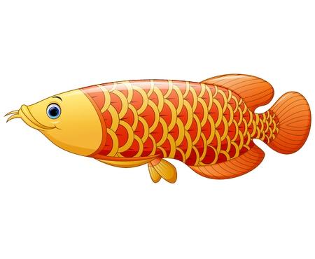 gill: Arowana fish Illustration