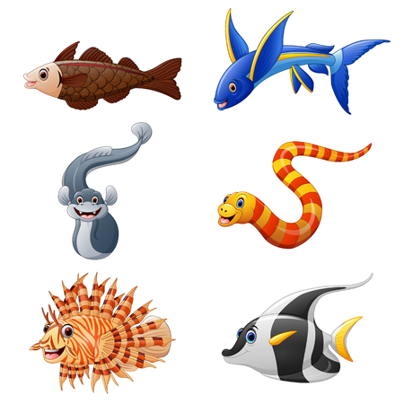 trigger fish: Cute fish collection set