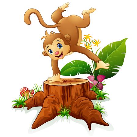tree stump: Cute monkey posing on tree stump